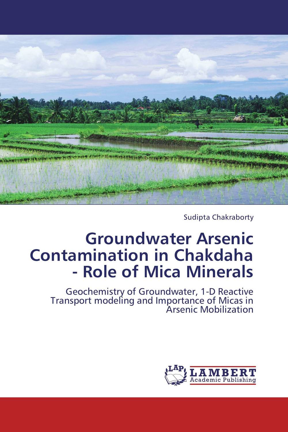 Groundwater Arsenic Contamination in Chakdaha - Role of Mica Minerals