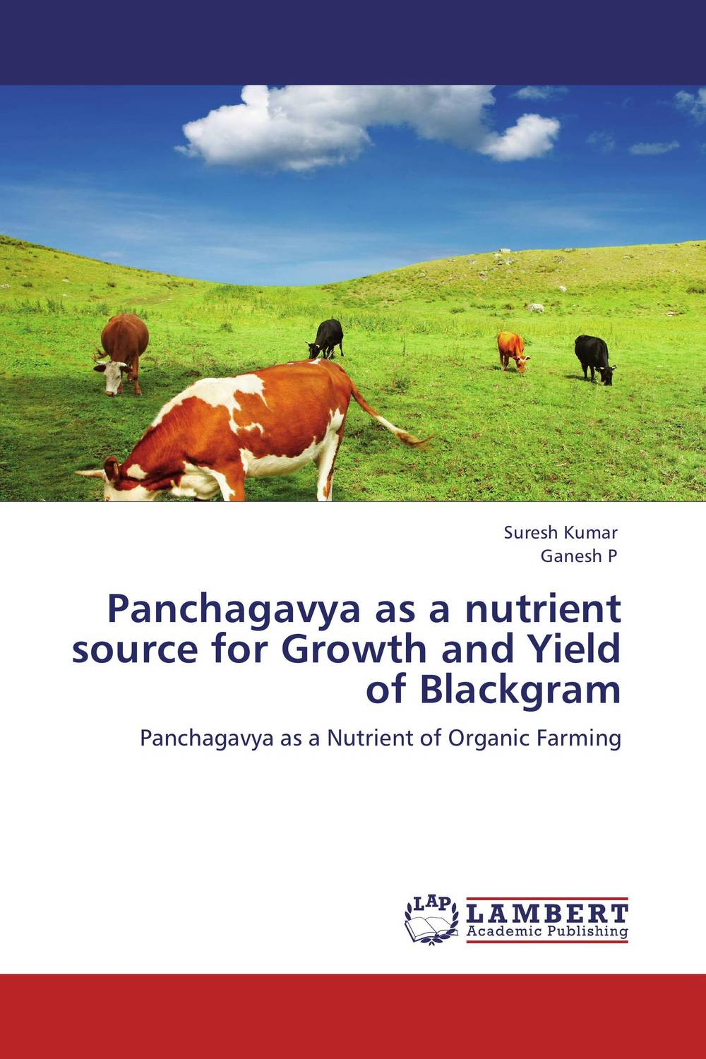 Panchagavya as a nutrient source for Growth and Yield of Blackgram evaluation of lucern as a predator source for wheat aphids