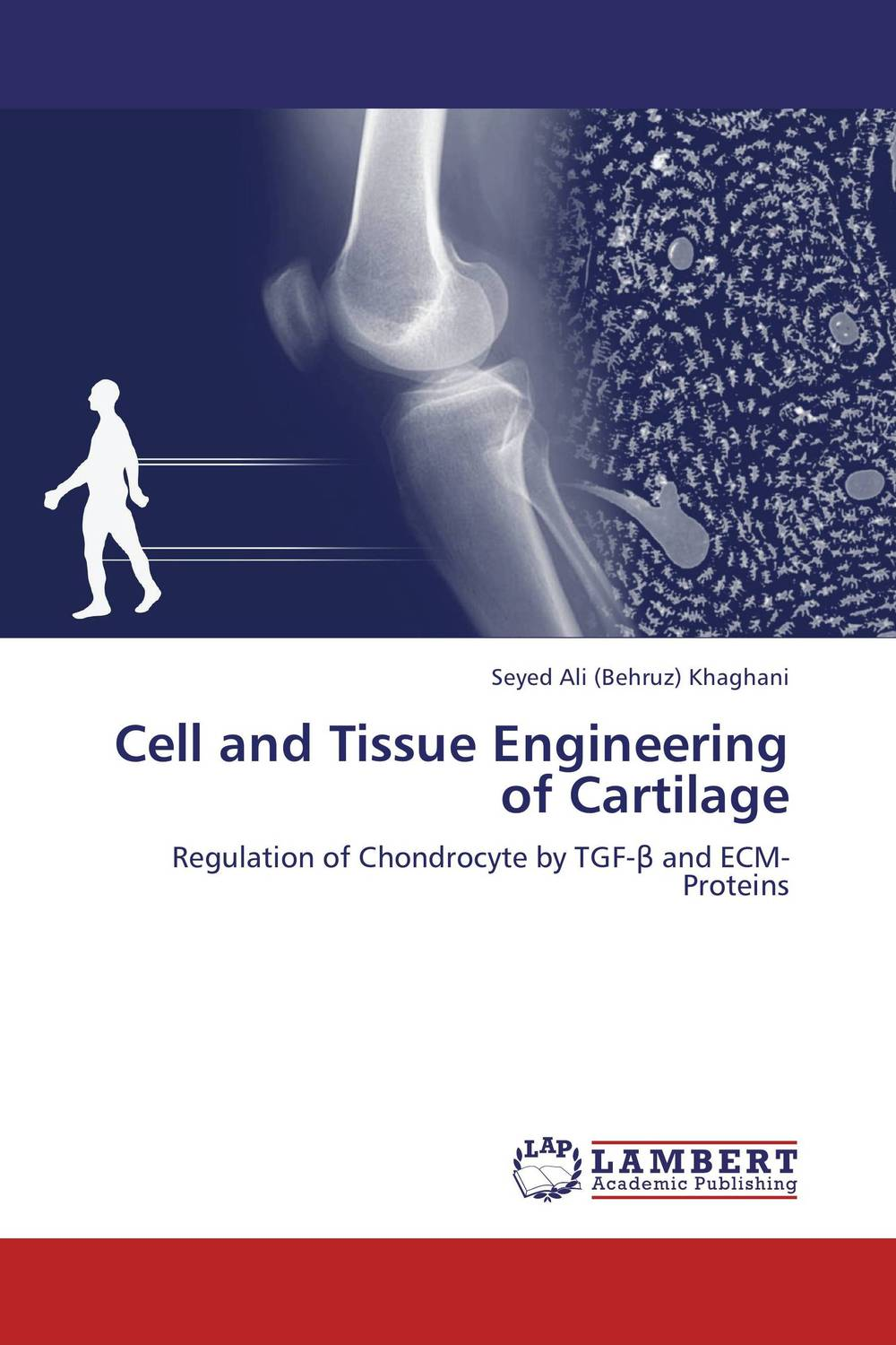 Cell and Tissue Engineering of Cartilage in vitro mechanism for the repair of muscle differentiation in dm1
