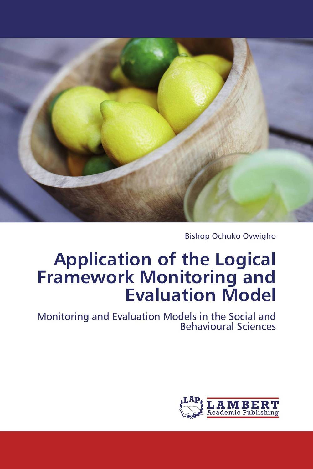 Application of the Logical Framework Monitoring and Evaluation Model