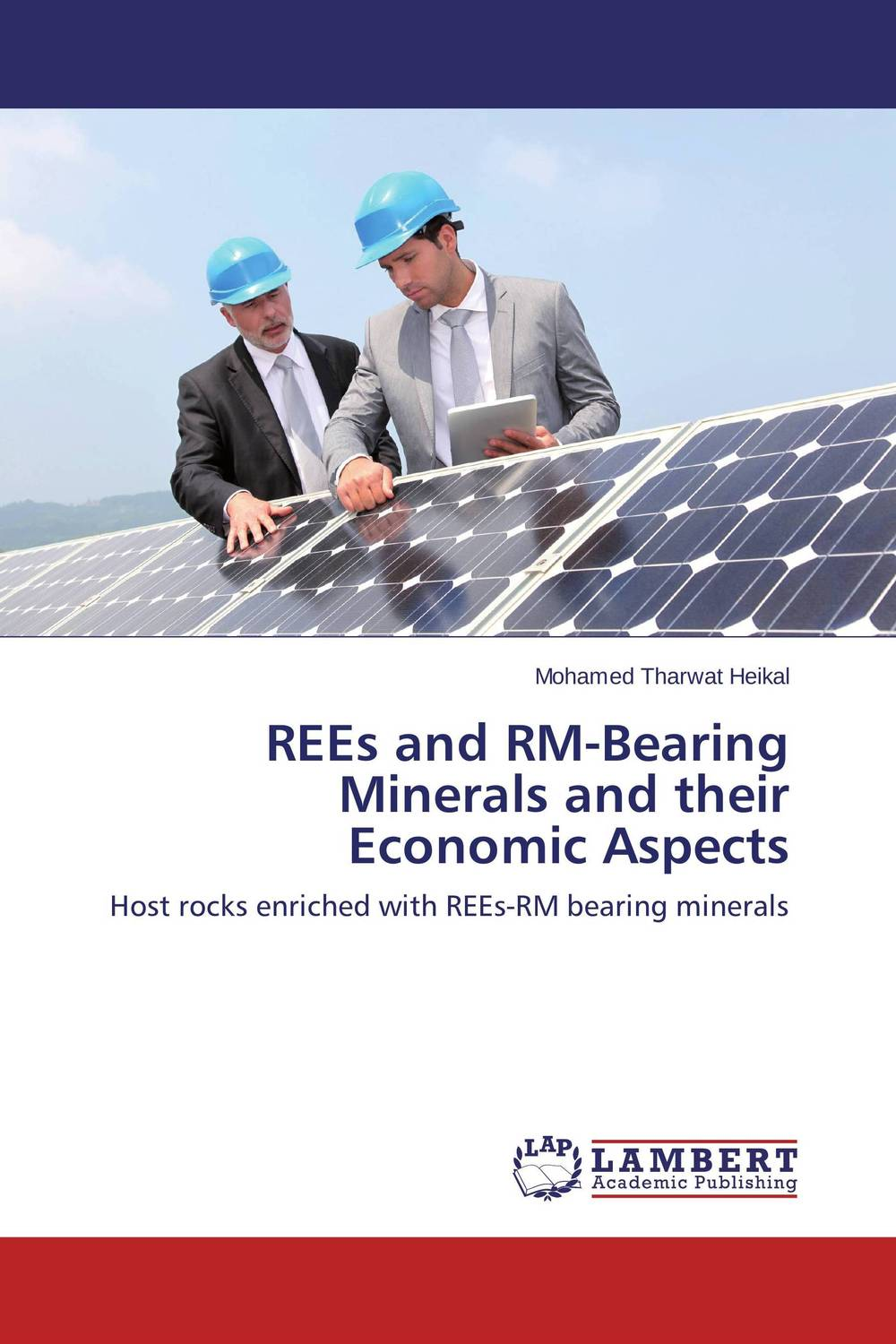 REEs and RM-Bearing Minerals and their Economic Aspects николай камзин theory and practical aspects of internationa settlements economic cooperation
