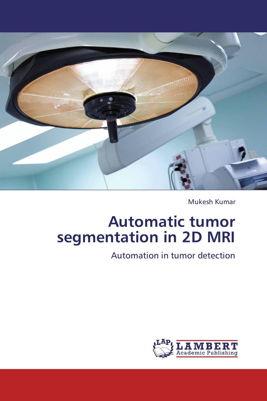 купить Automatic tumor segmentation in 2D MRI недорого