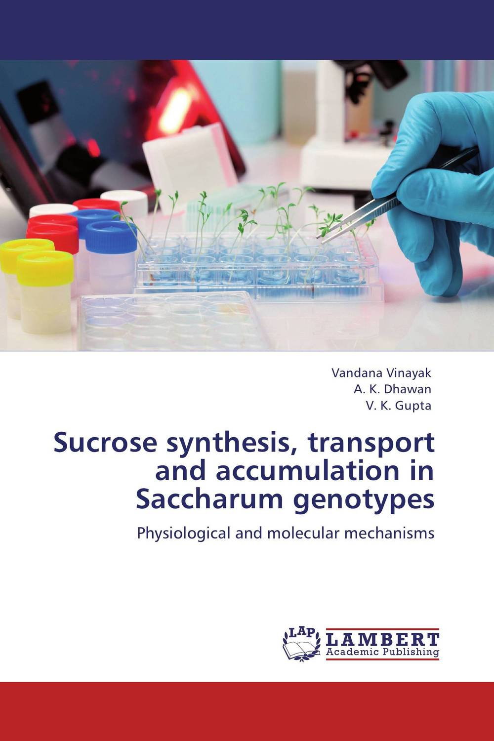 Sucrose synthesis, transport and accumulation in Saccharum genotypes d rakesh s s kalyan kamal and sumair faisal ahmed synthesis