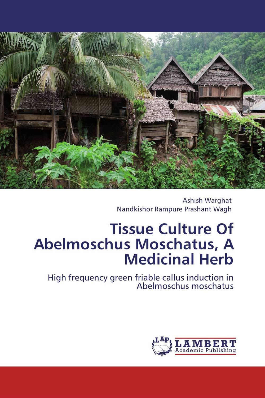 Tissue Culture Of Abelmoschus Moschatus, A Medicinal Herb tissue culture of citrus reticulata blanco kinnow