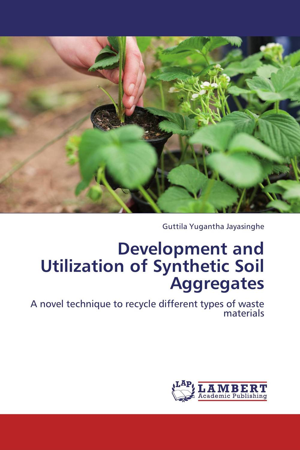 Development and Utilization of Synthetic Soil Aggregates utilization of palm oil mill wastes