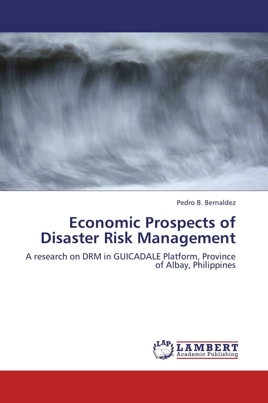 Economic Prospects of Disaster Risk Management karen hardy enterprise risk management a guide for government professionals