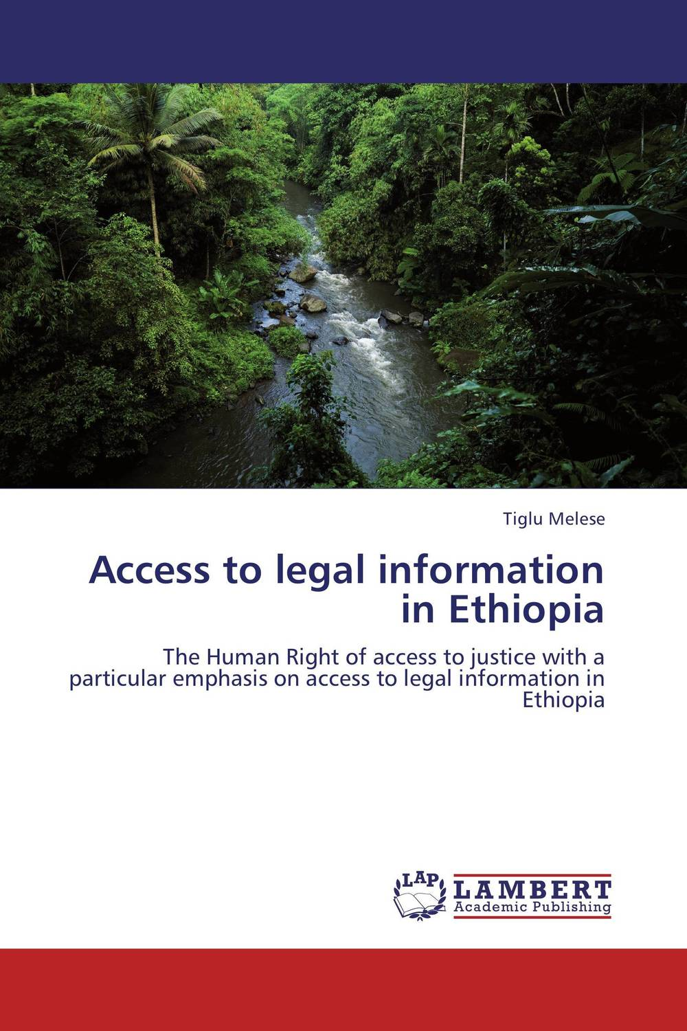 цена на Access to legal information in Ethiopia
