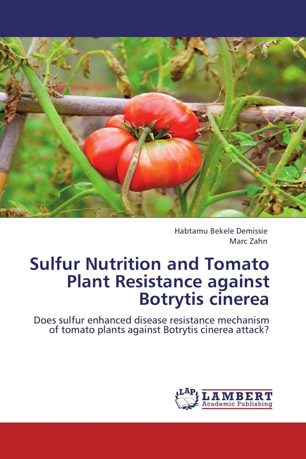 Sulfur Nutrition and Tomato Plant Resistance against Botrytis cinerea resistance study in tomato