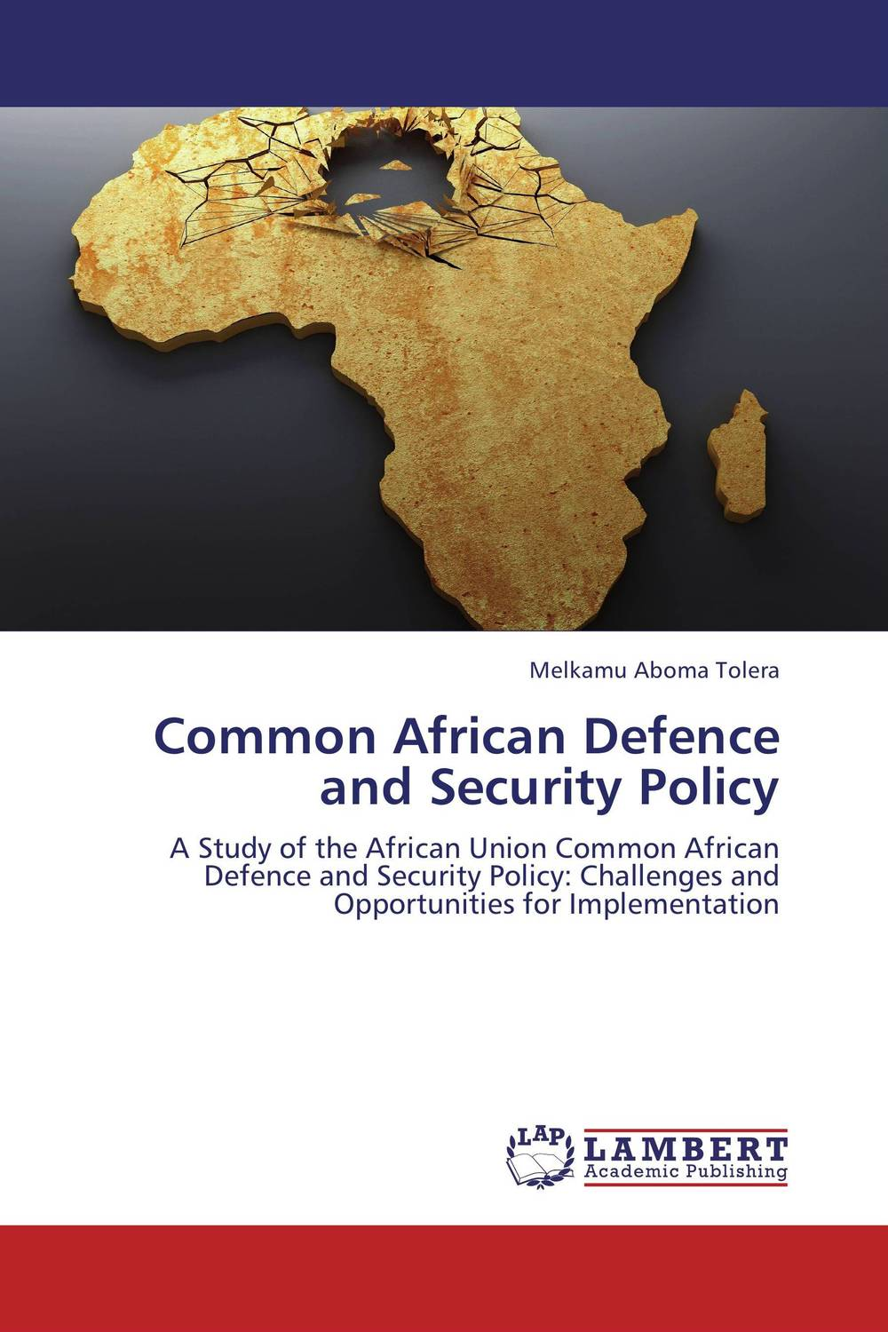 Common African Defence and Security Policy the common link