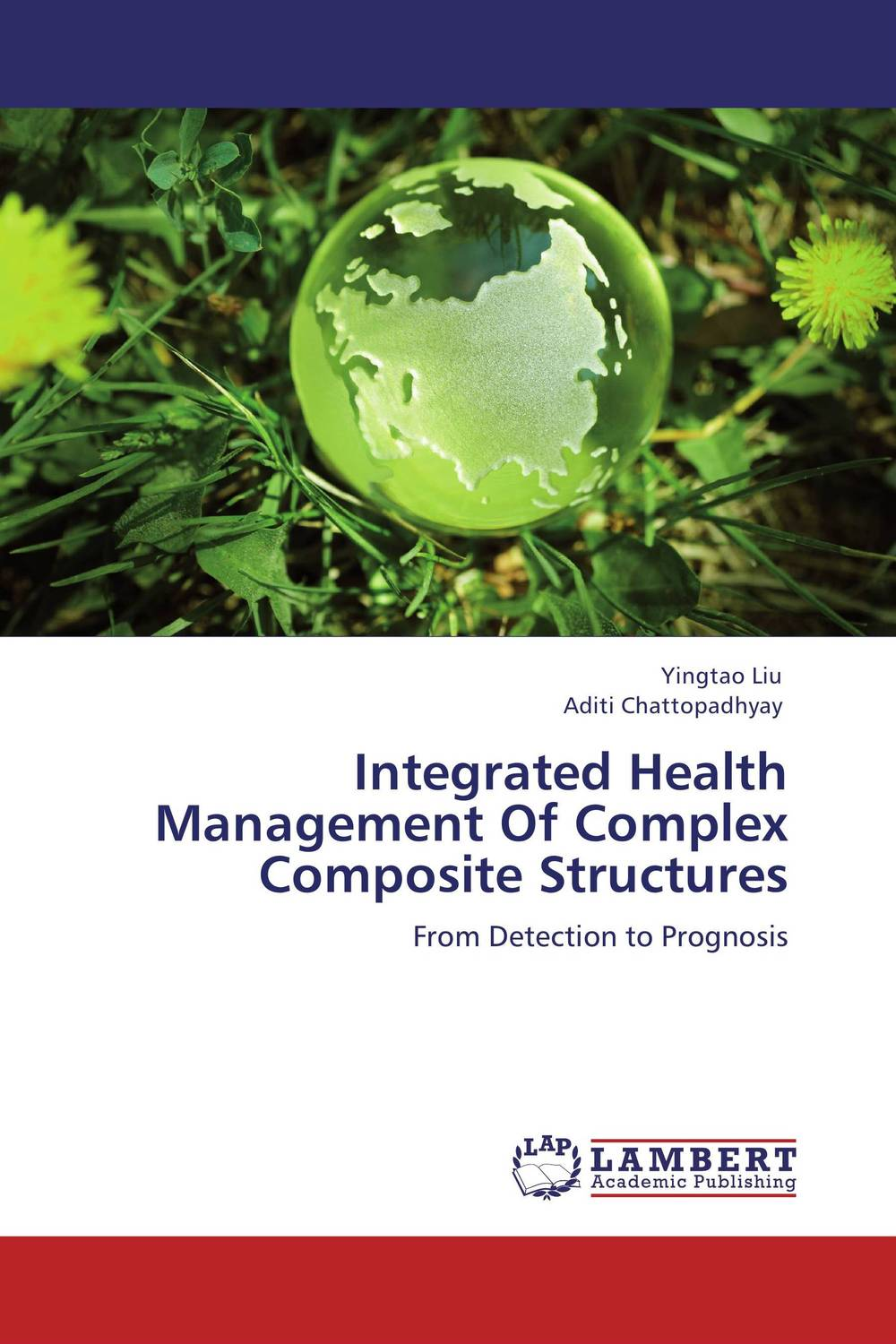 Integrated Health Management Of Complex Composite Structures composite structures design safety and innovation