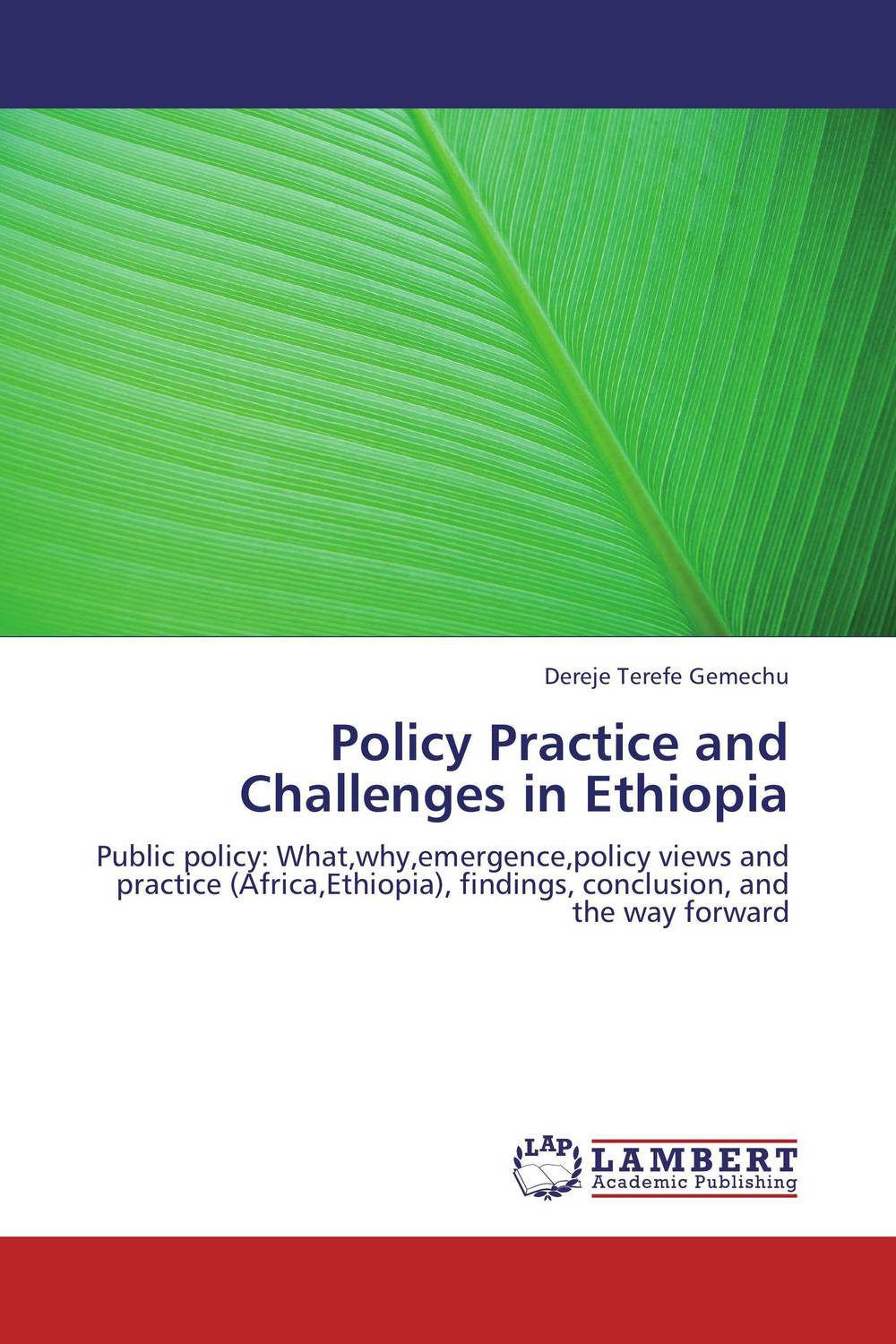 Policy Practice and Challenges in Ethiopia the role of evaluation as a mechanism for advancing principal practice