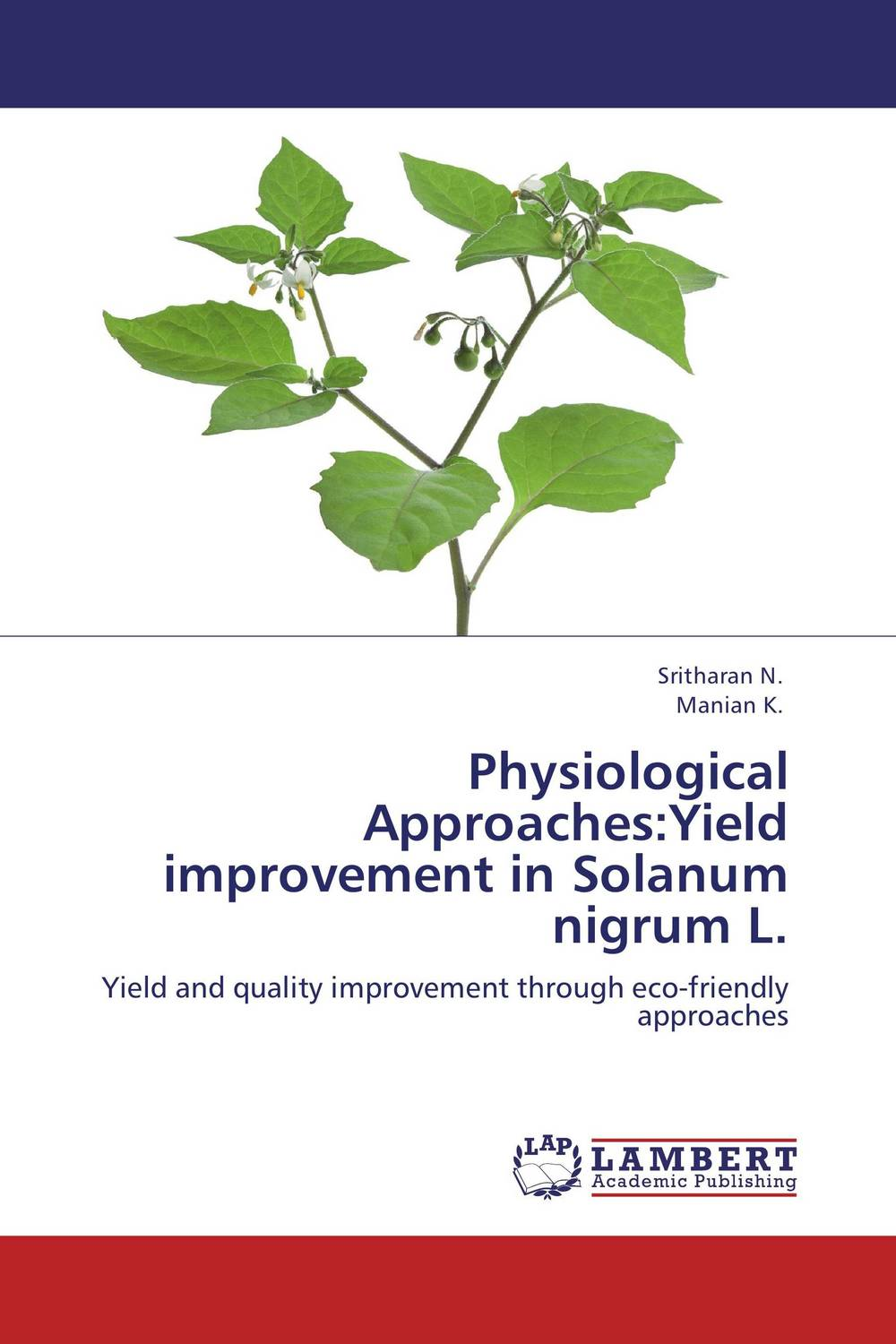 Physiological Approaches:Yield improvement in Solanum nigrum L. ndereyimana assinapol praneetha s and pugalendhi l spacing and fertigation in brinjal solanum melongena l grafts
