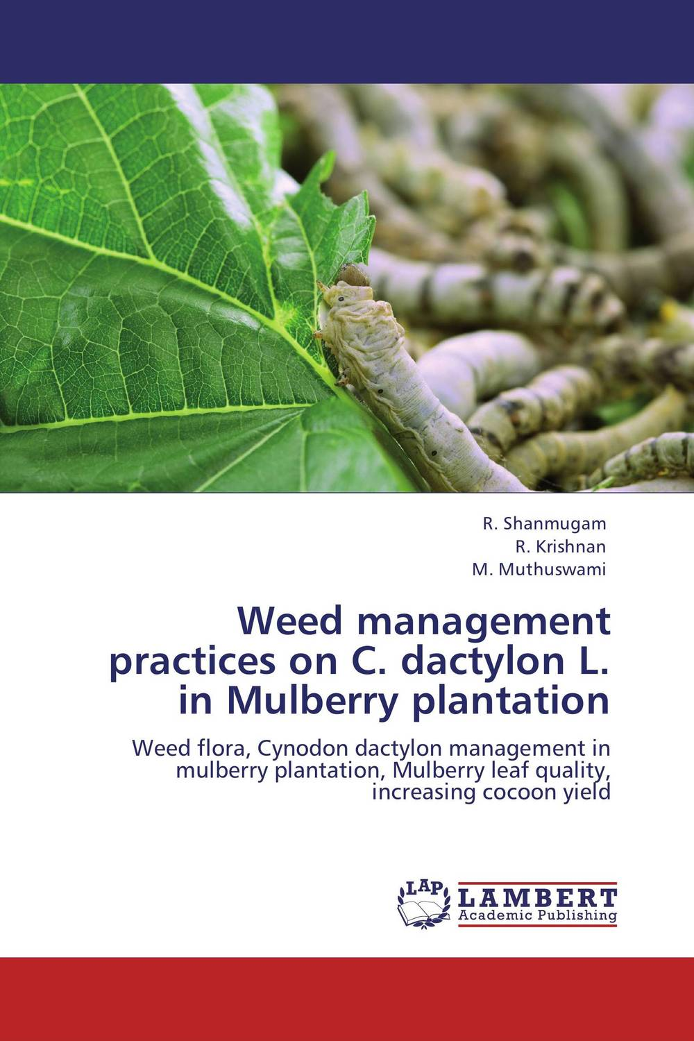 Weed management practices on C. dactylon L. in Mulberry plantation the meadow vale ponies mulberry and the summer show