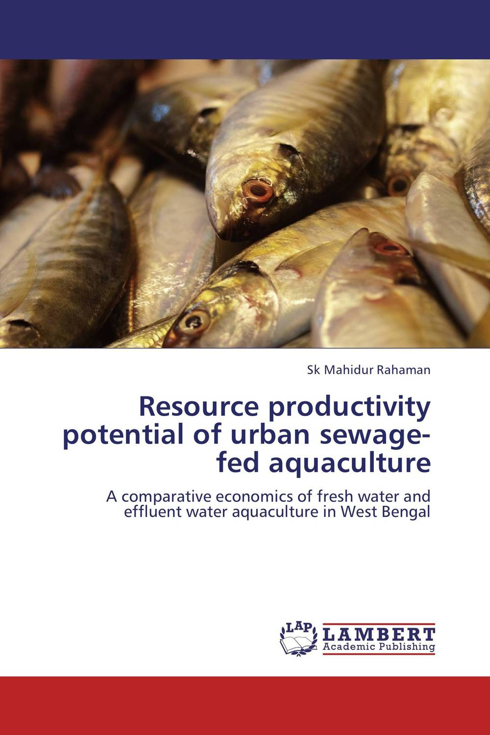 Resource productivity potential of urban sewage-fed aquaculture forestry trees under irrigation with sewage effluent