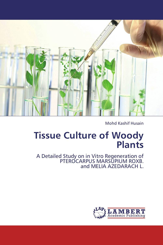 Tissue Culture of Woody Plants tissue culture of citrus reticulata blanco kinnow