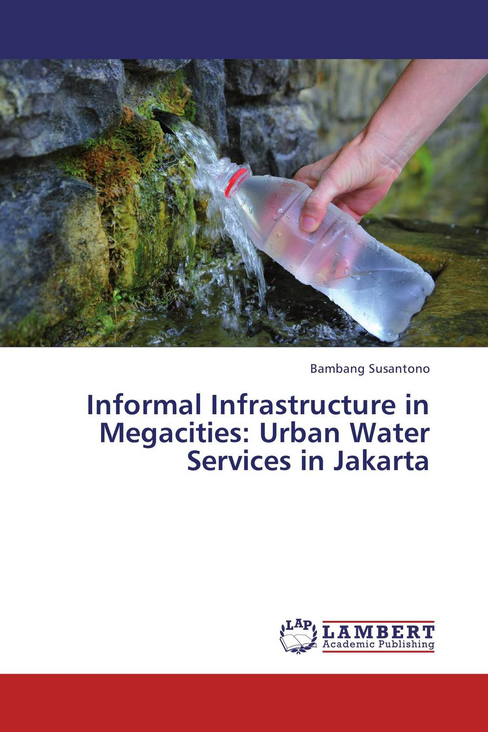 Informal Infrastructure in Megacities: Urban Water Services in Jakarta forest ecosystem services and urban water supply