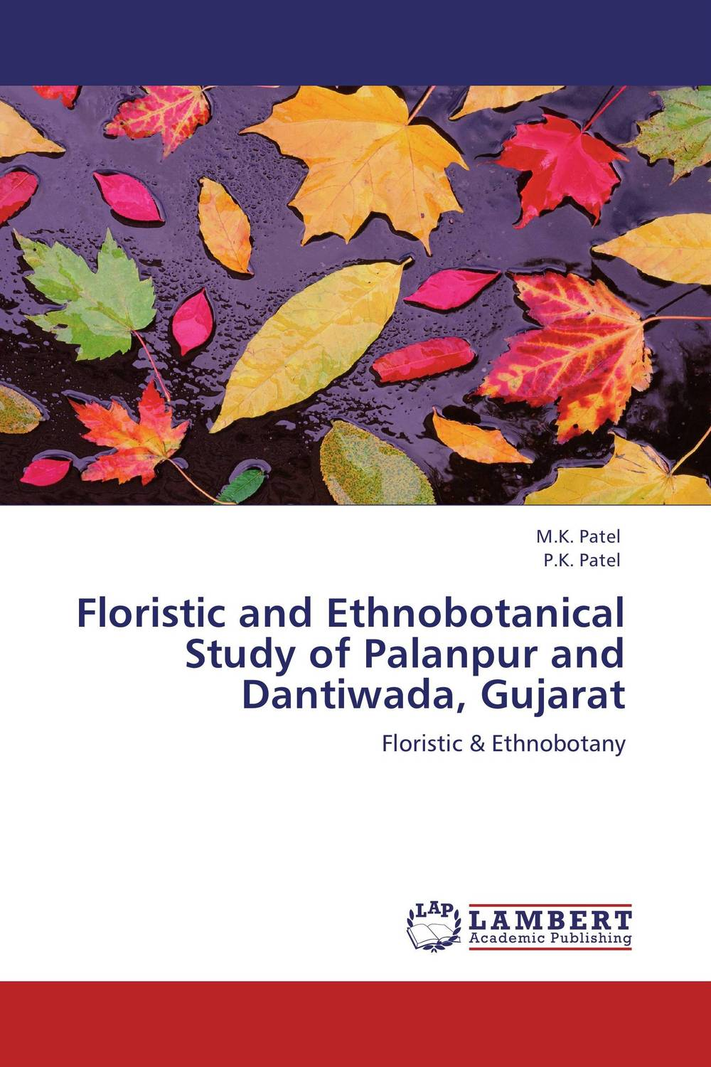 Floristic and Ethnobotanical Study of Palanpur and Dantiwada, Gujarat textiles and dress of gujarat
