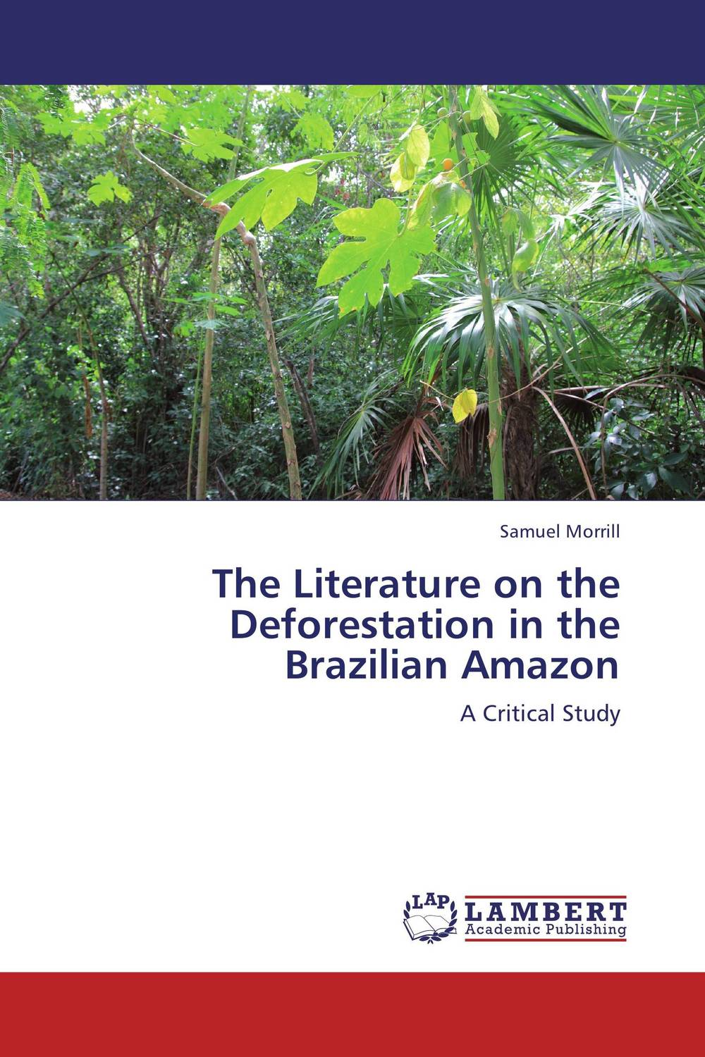 The Literature on the Deforestation in the Brazilian Amazon the counterlife