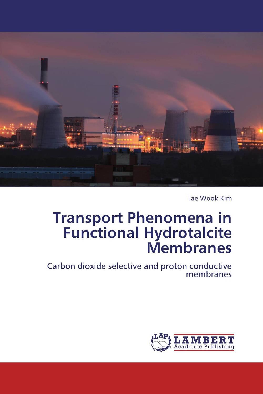 Transport Phenomena in Functional Hydrotalcite Membranes