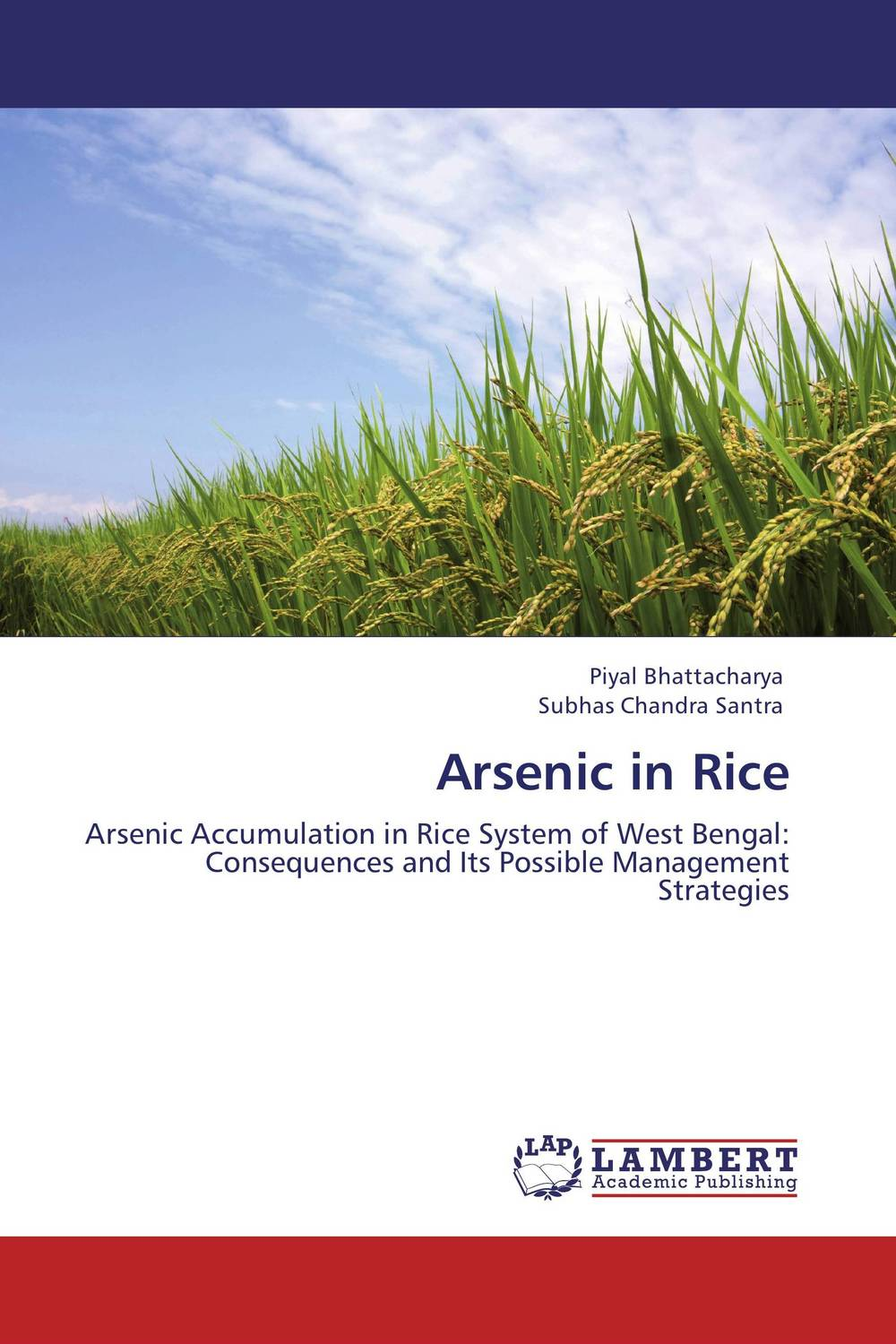 Arsenic in Rice found in brooklyn