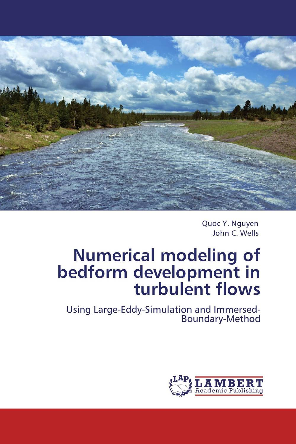Numerical modeling of bedform development in turbulent flows turbulent free jet particle laden flows