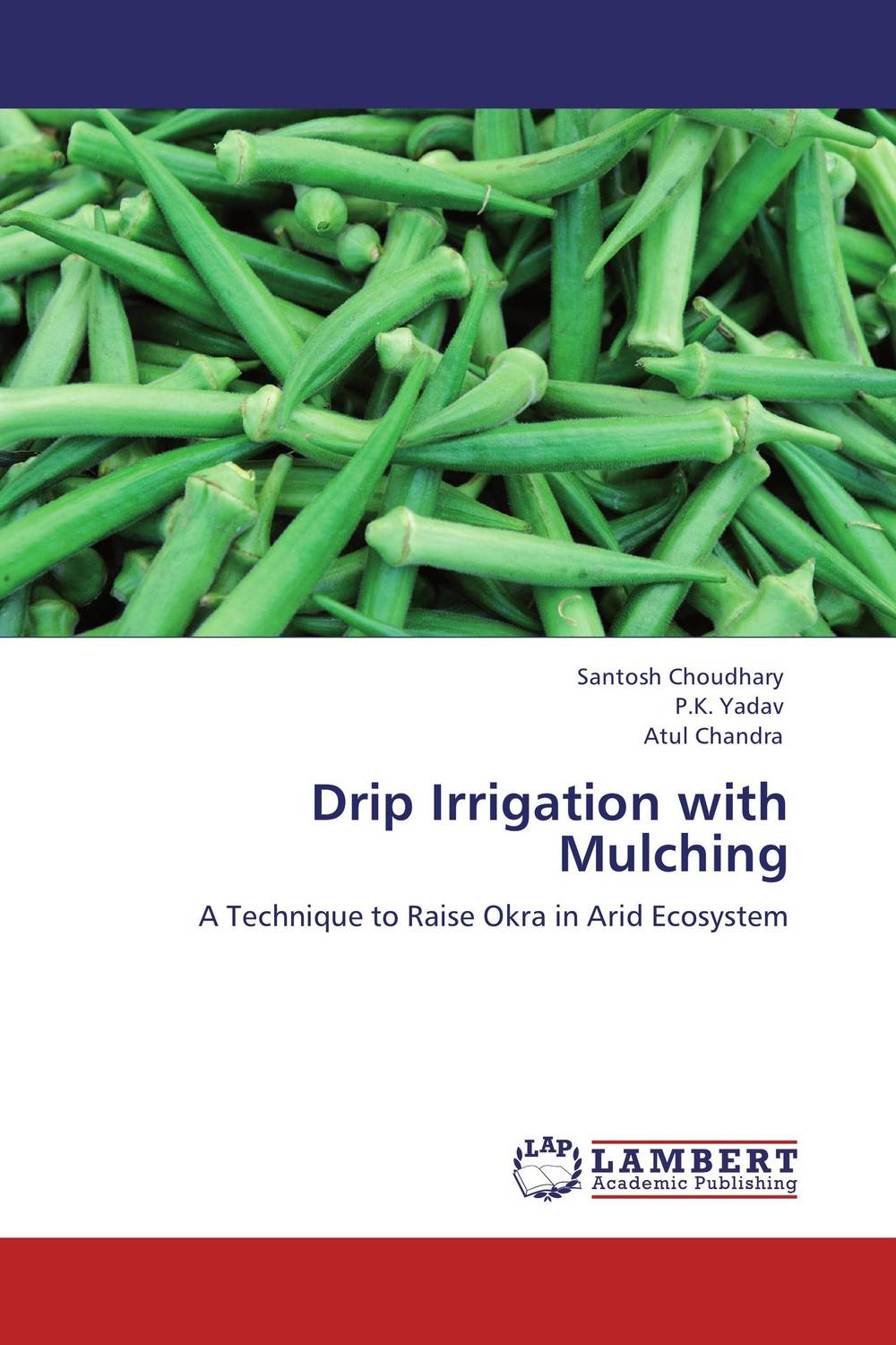 Drip Irrigation with Mulching farm level adoption of water system innovations in semi arid areas