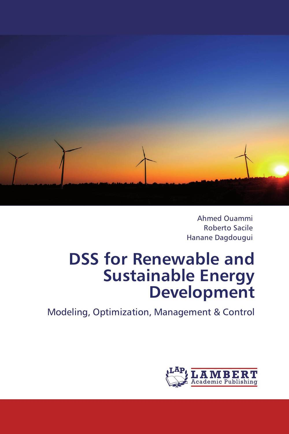 DSS for Renewable and Sustainable Energy Development 019675 arlight