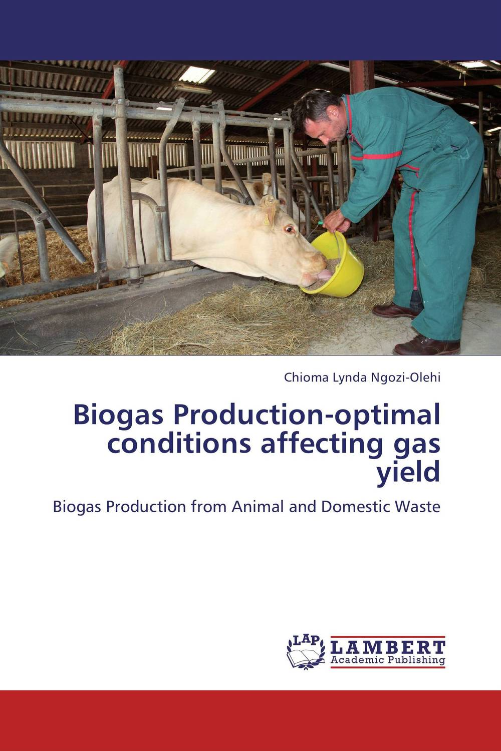 Biogas Production-optimal conditions affecting gas yield biogas energy production and use