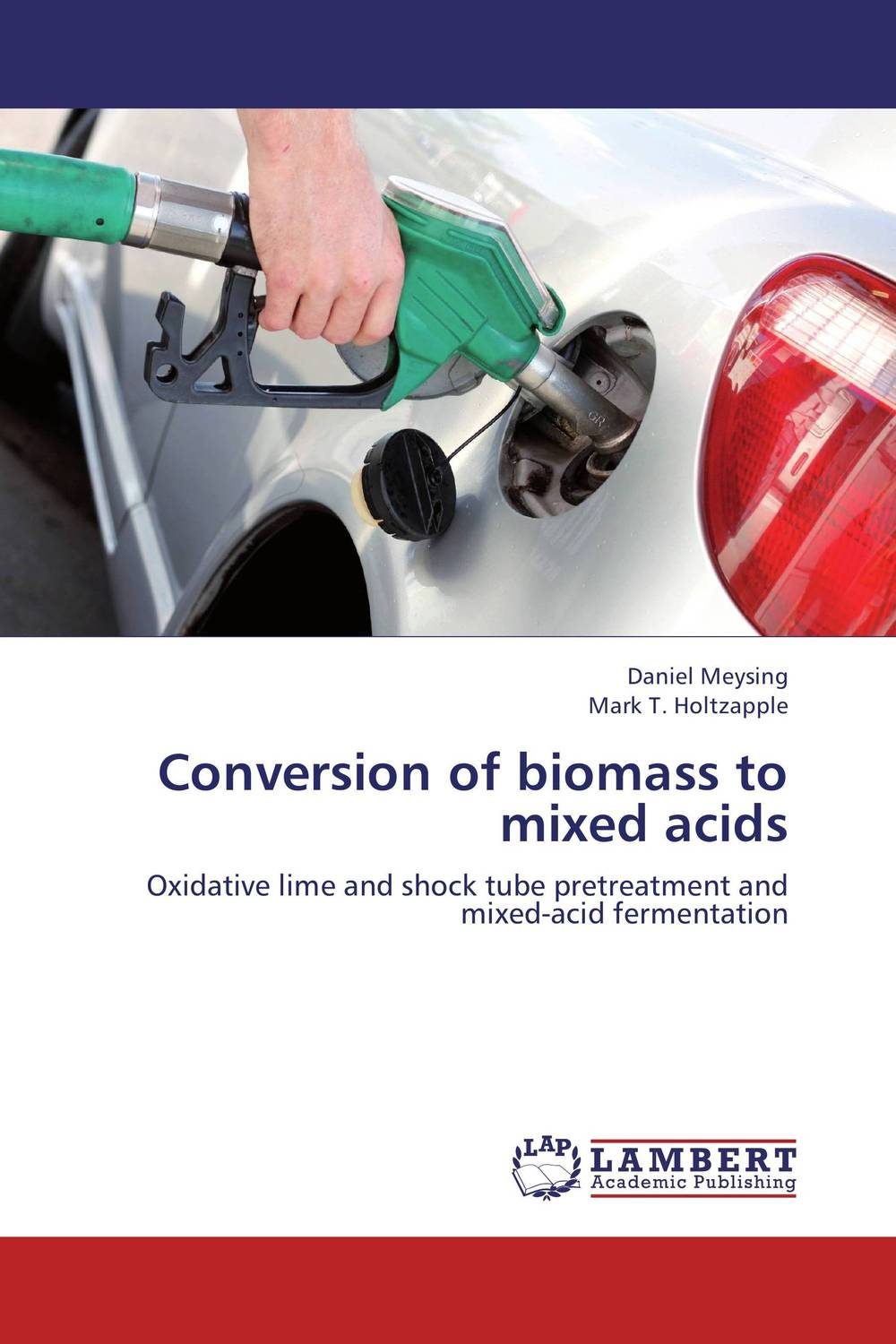 Conversion of biomass to mixed acids study of mixed number
