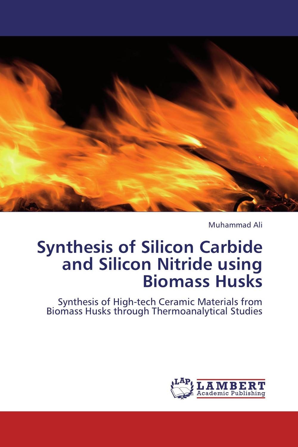 Synthesis of Silicon Carbide and Silicon Nitride using Biomass Husks modified pnas synthesis and interaction studies with dna
