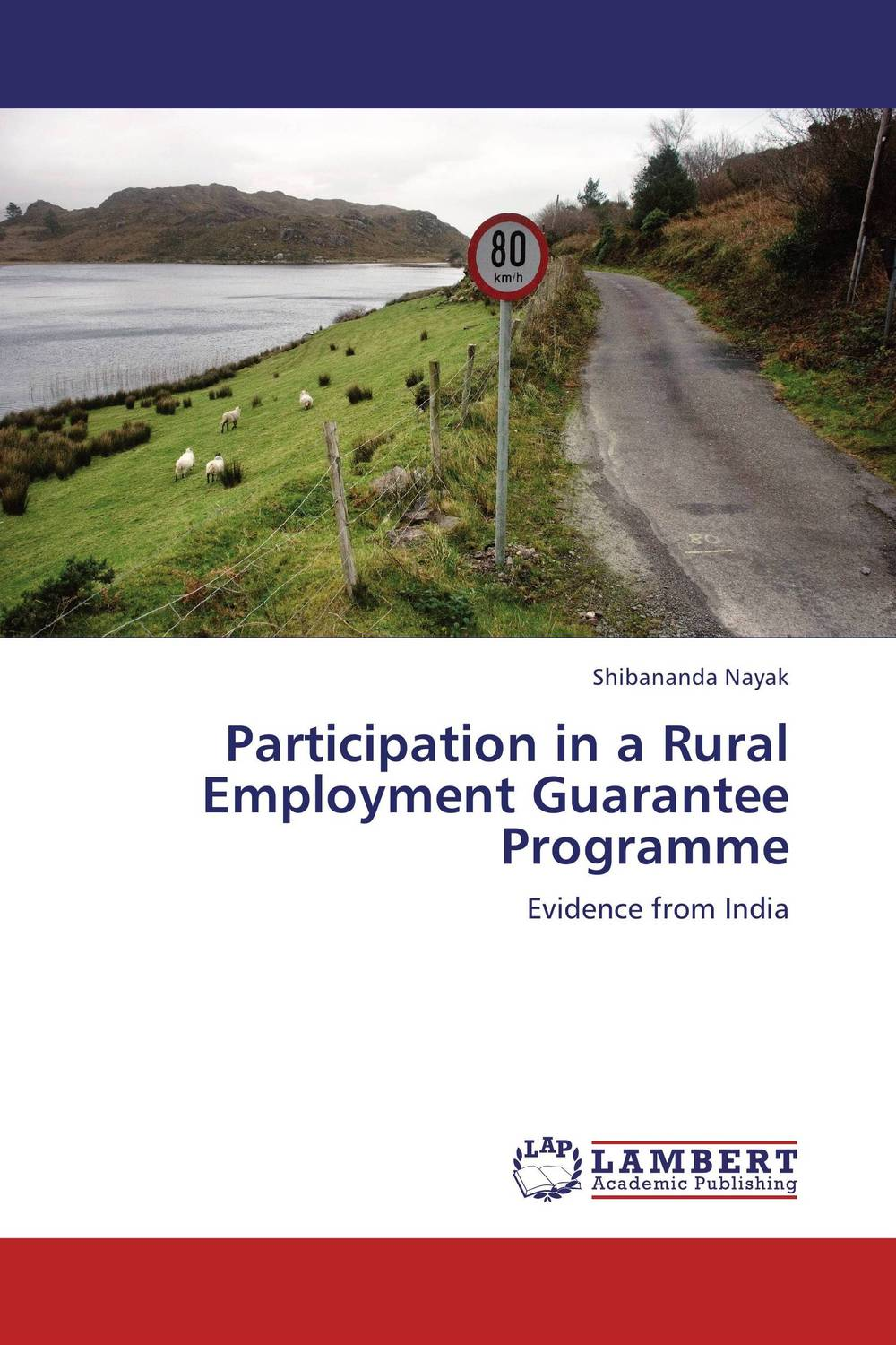 Participation in a Rural Employment Guarantee Programme women as work force in rural india