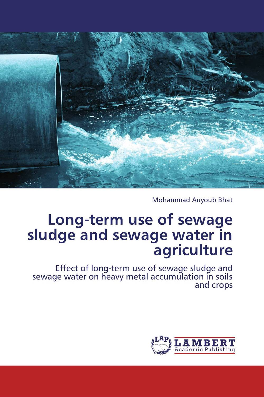 Long-term use of sewage sludge and sewage water in agriculture nail and heavy metal toxicity