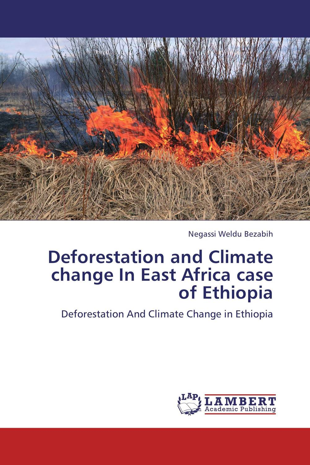 Deforestation and Climate change In East Africa case of Ethiopia bix f9 advanced cervical change and the relationship of the birth canal model mq180