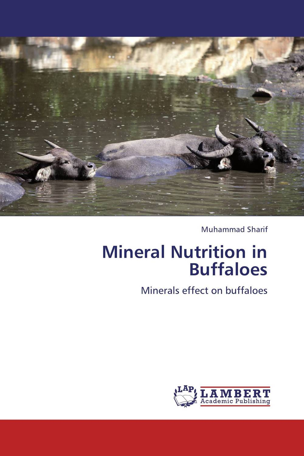 Mineral Nutrition in Buffaloes psychiatric disorders in postpartum period