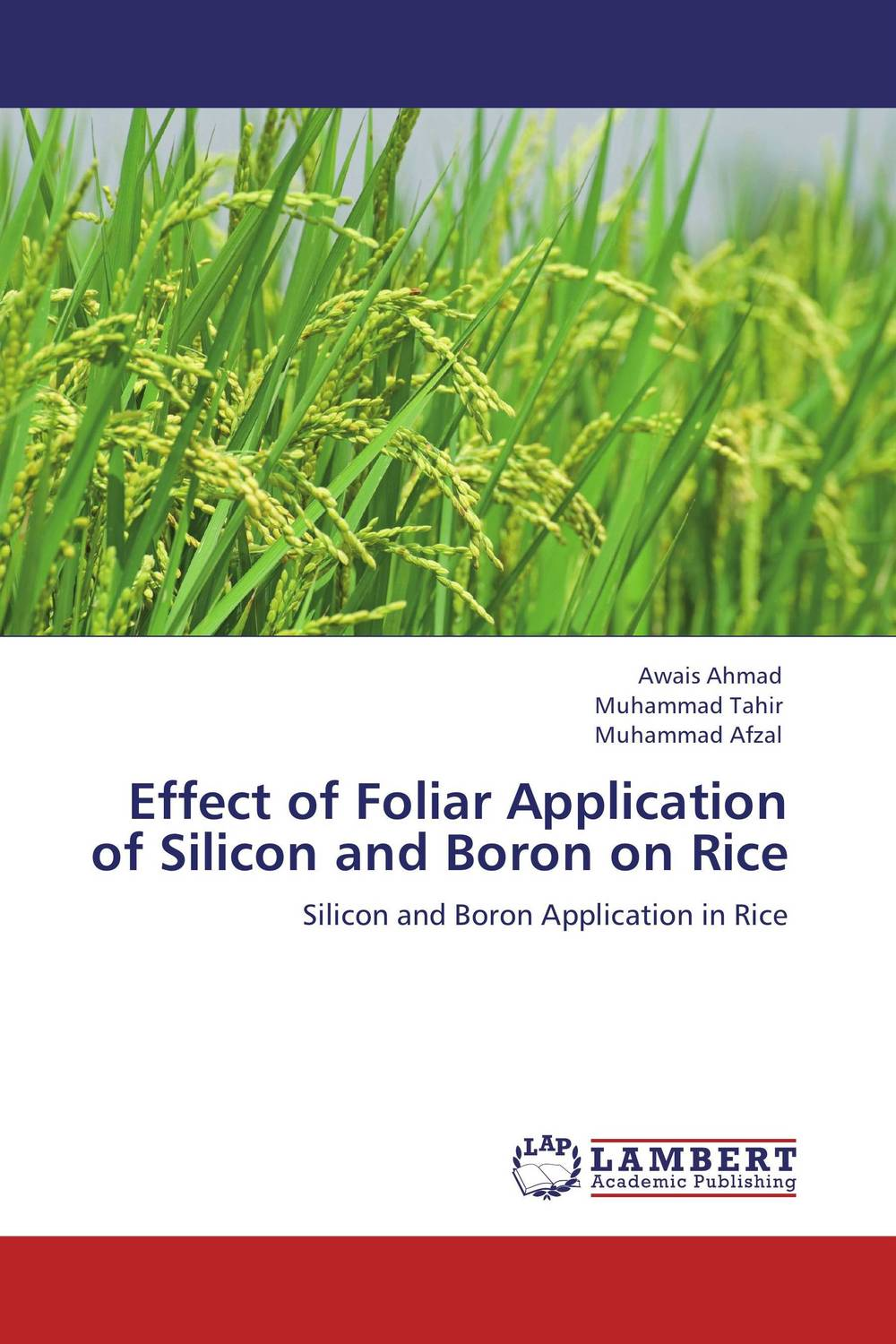 Effect of Foliar Application of Silicon and Boron on Rice water table control for rice production in ghana