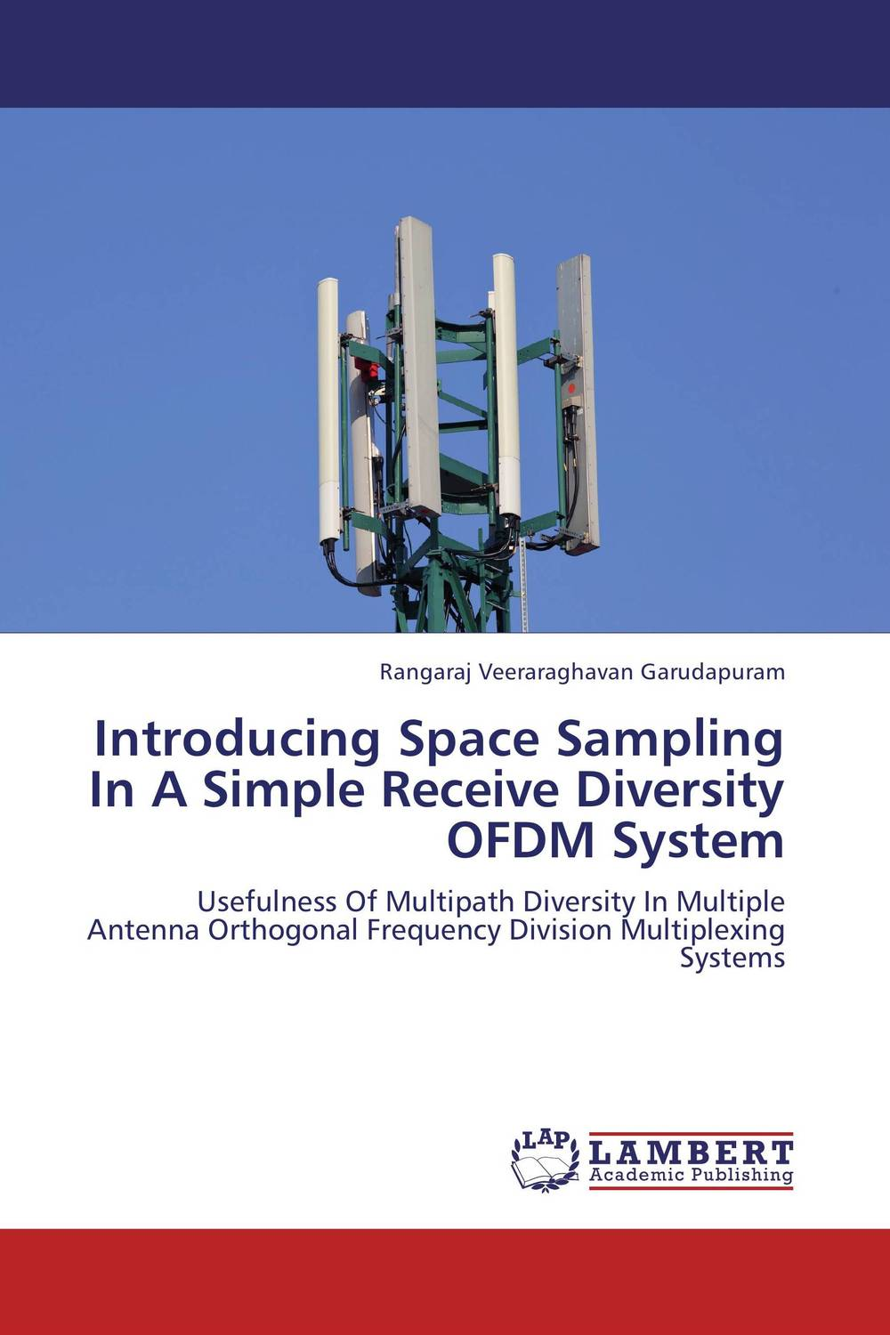 Introducing Space Sampling In A Simple Receive Diversity OFDM System linguistic diversity and social justice