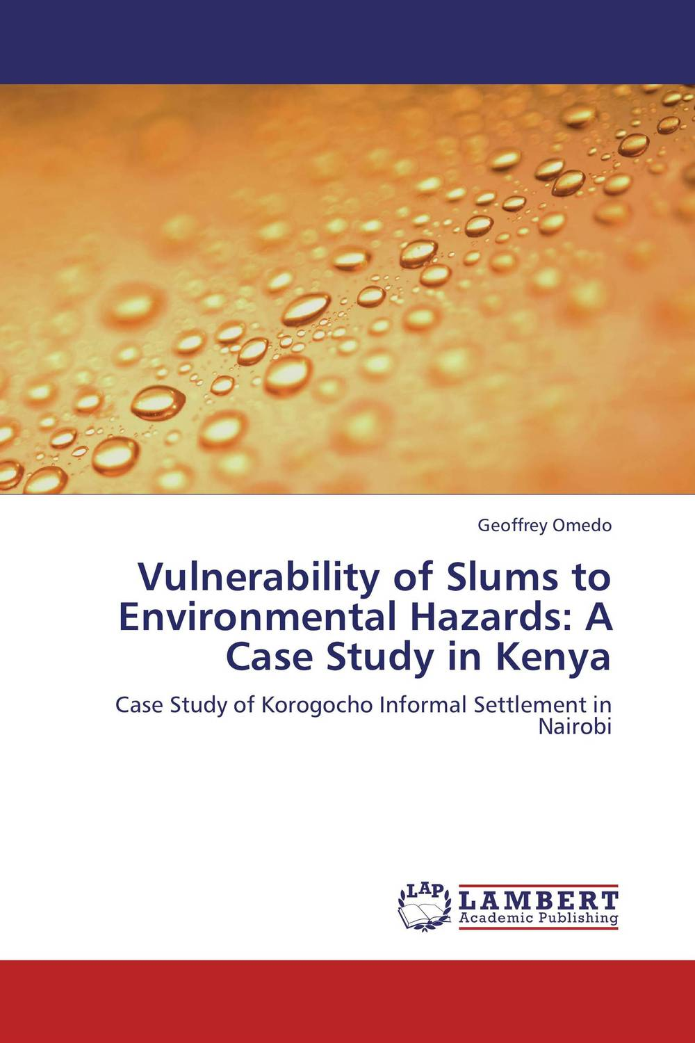Vulnerability of Slums to Environmental Hazards: A Case Study in Kenya baljit singh polymeric pesticide delivery systems to control environmental hazards