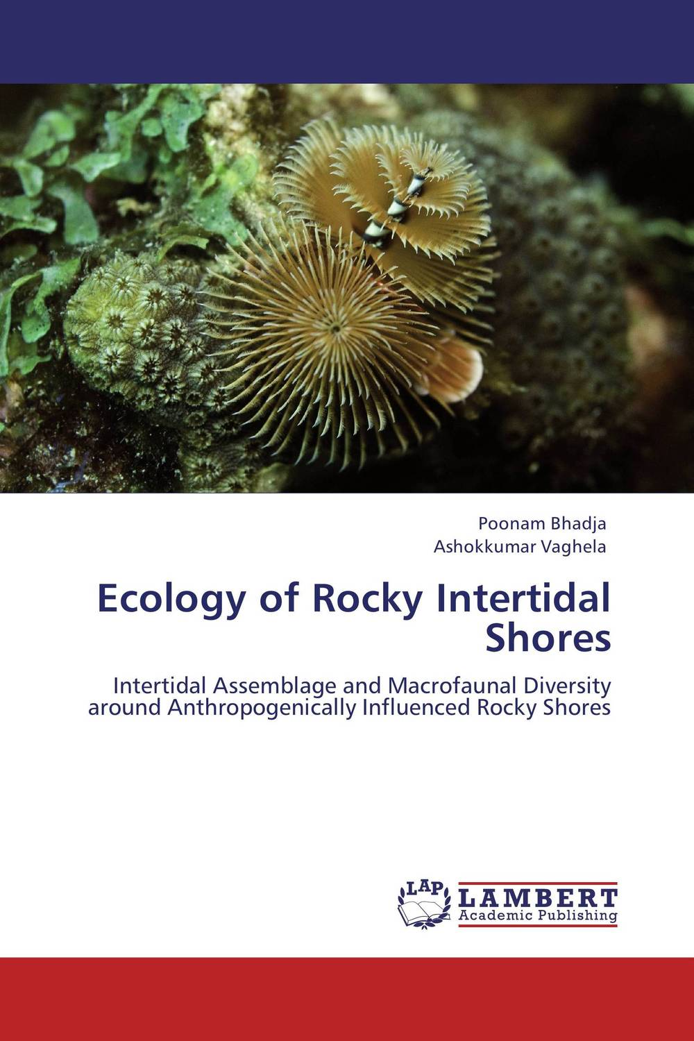 Ecology of Rocky Intertidal Shores ecosystem ecology