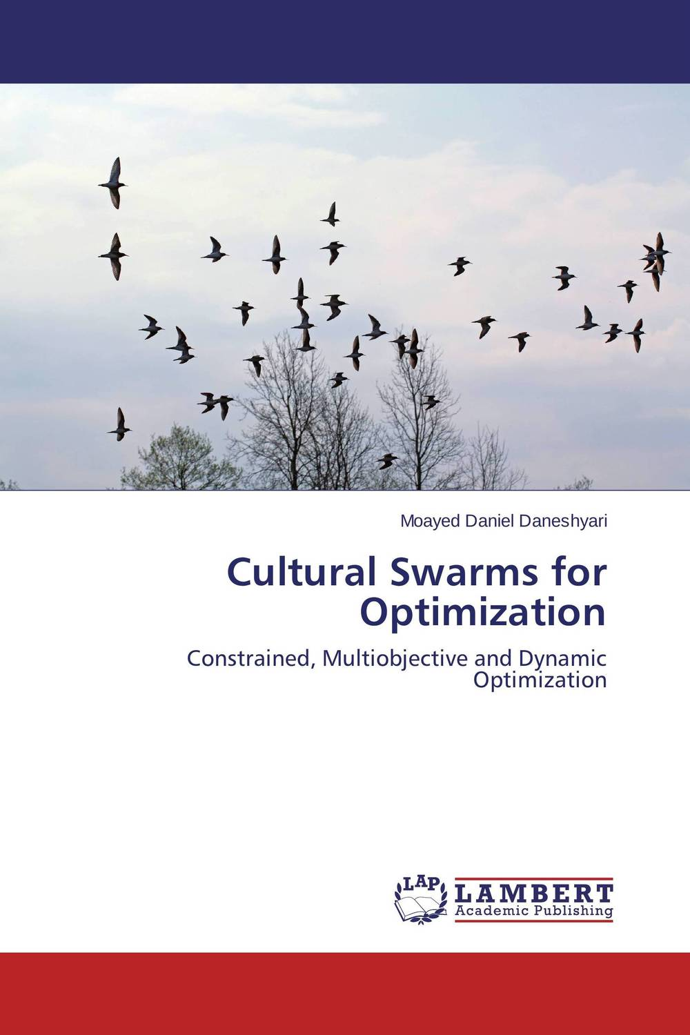 Cultural Swarms for Optimization