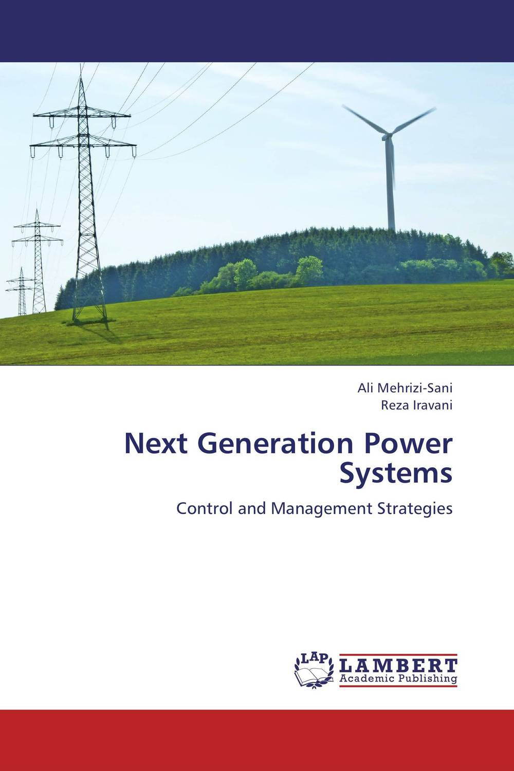 Next Generation Power Systems charles chase w next generation demand management people process analytics and technology