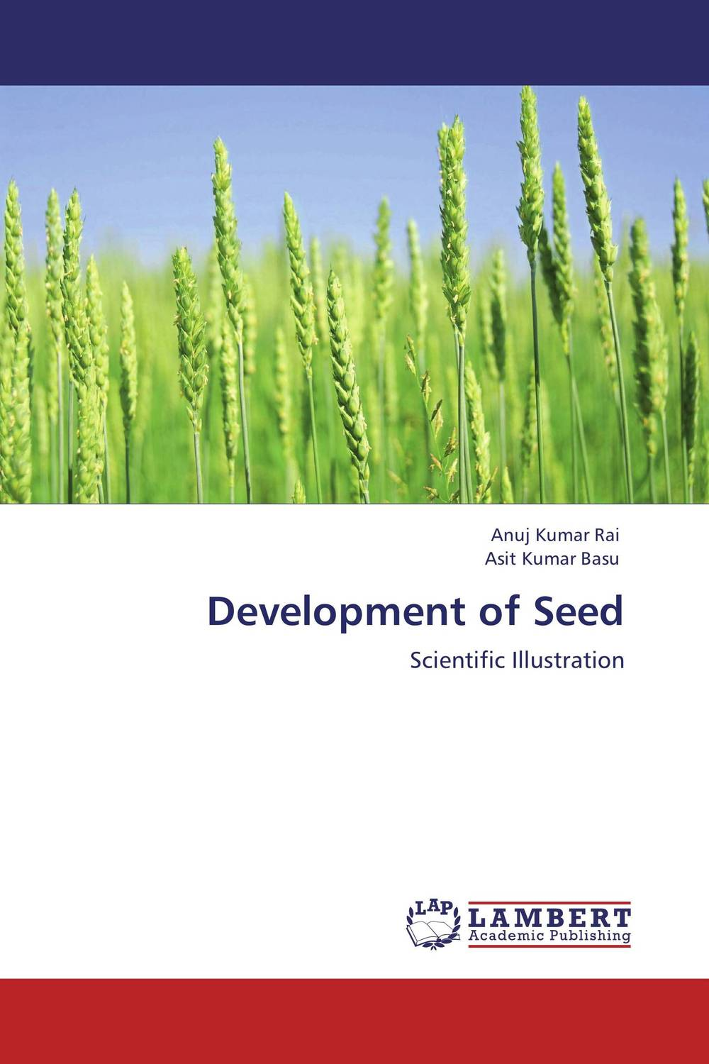 Development of Seed seed dormancy and germination