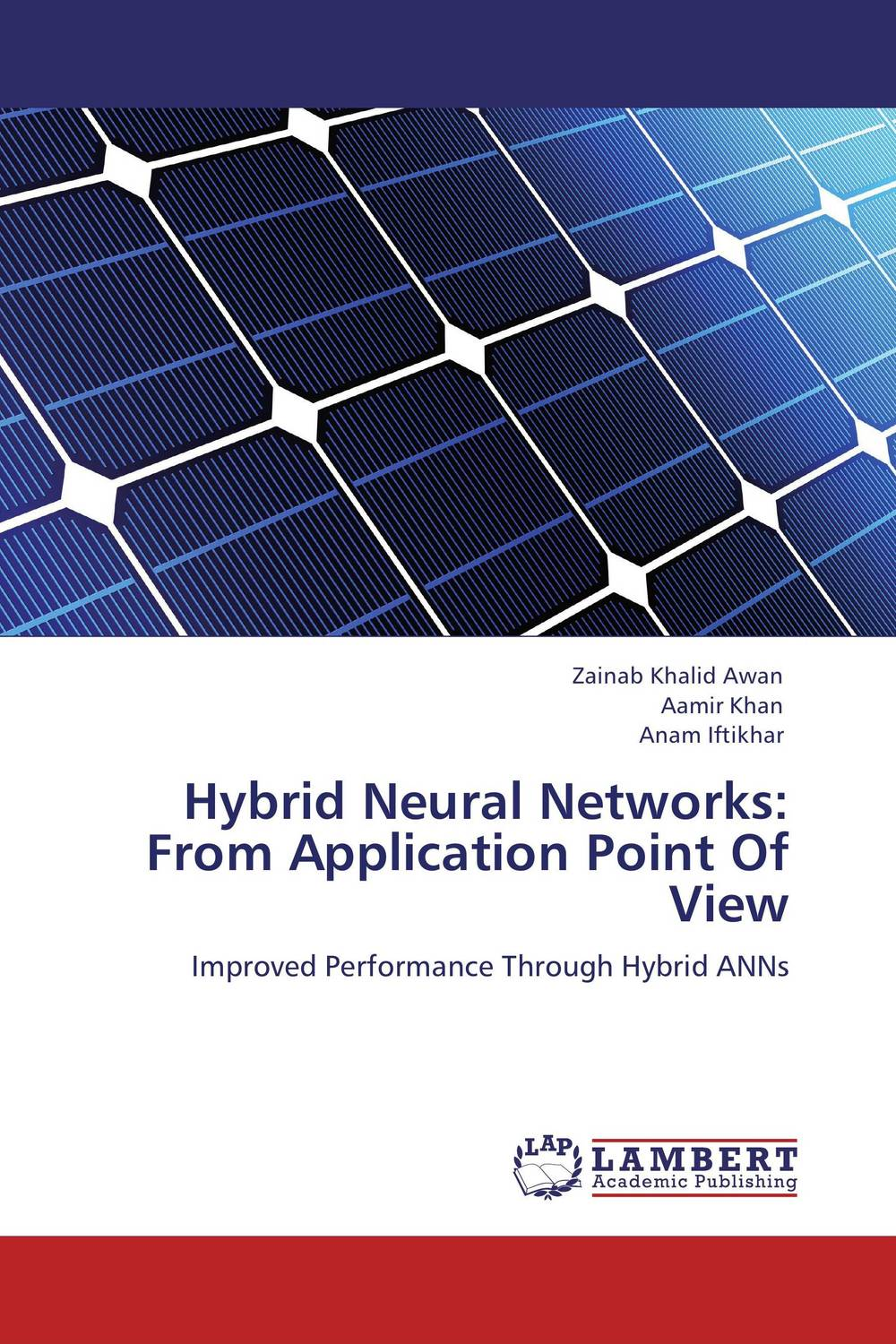 Hybrid Neural Networks: From Application Point Of View web spam detection application using neural network