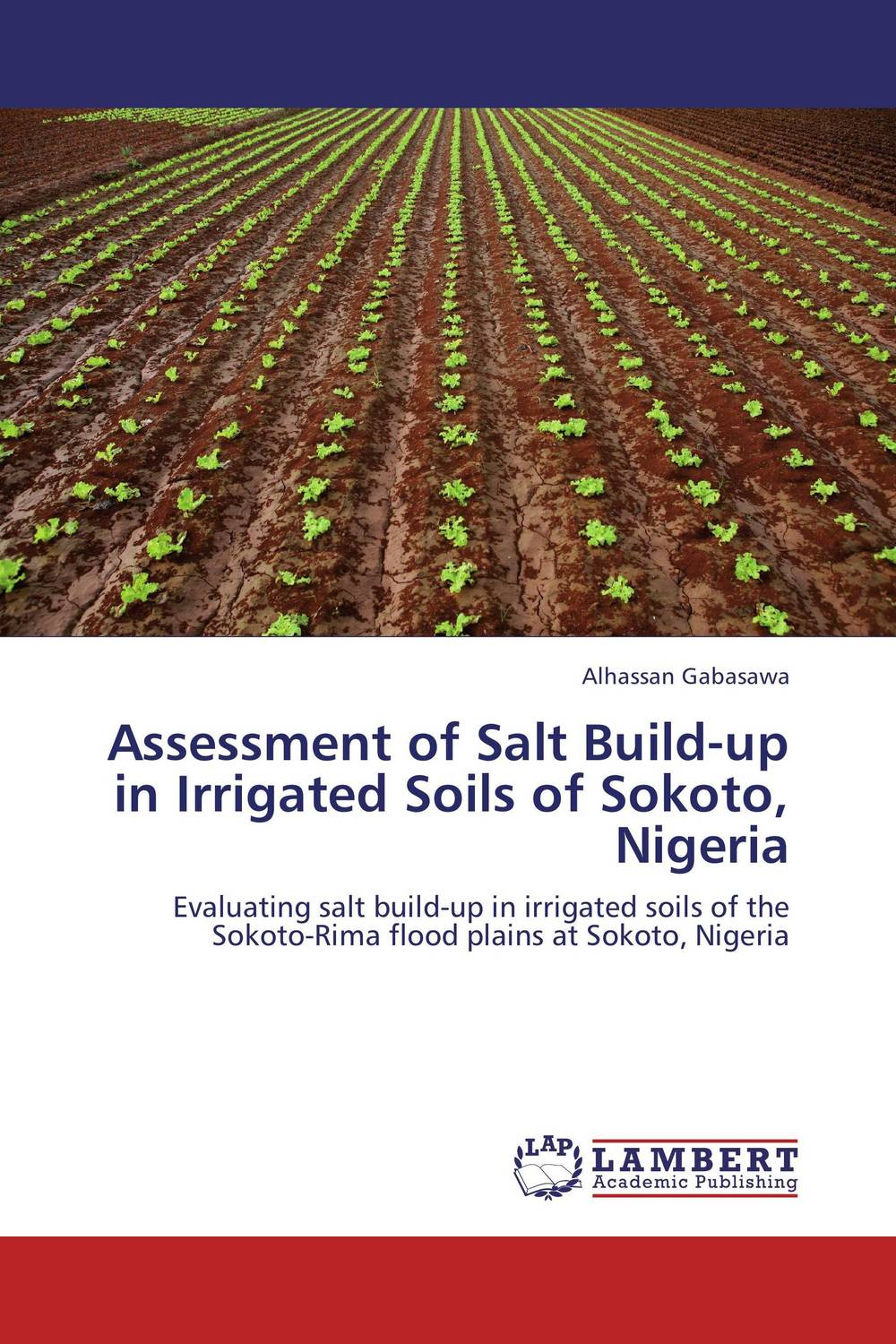 Assessment of Salt Build-up in Irrigated Soils of Sokoto, Nigeria status of soils and water reservoirs near industrial areas of baroda