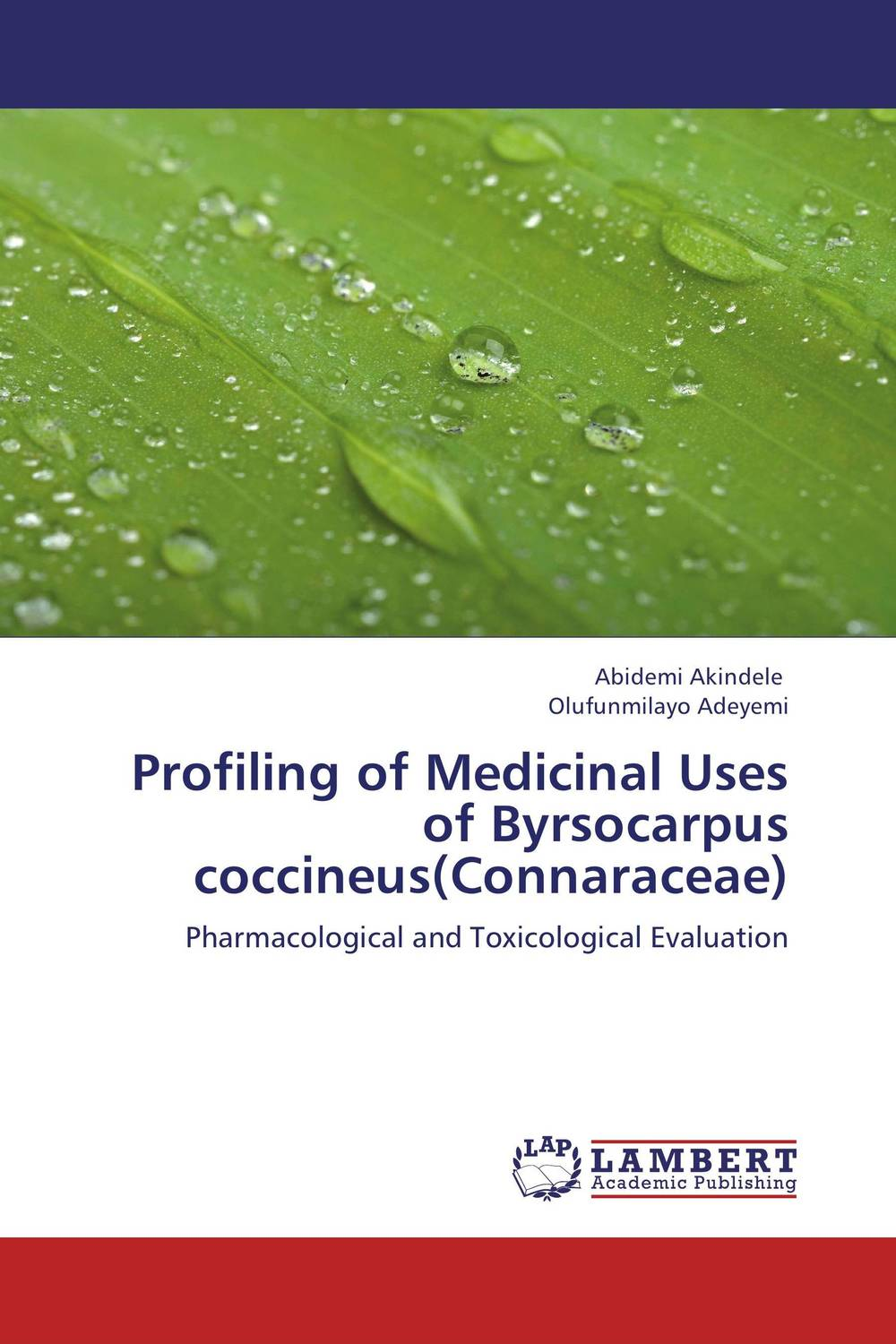Profiling of Medicinal Uses of Byrsocarpus coccineus(Connaraceae) impurity profiling of drugs and pharmaceuticals