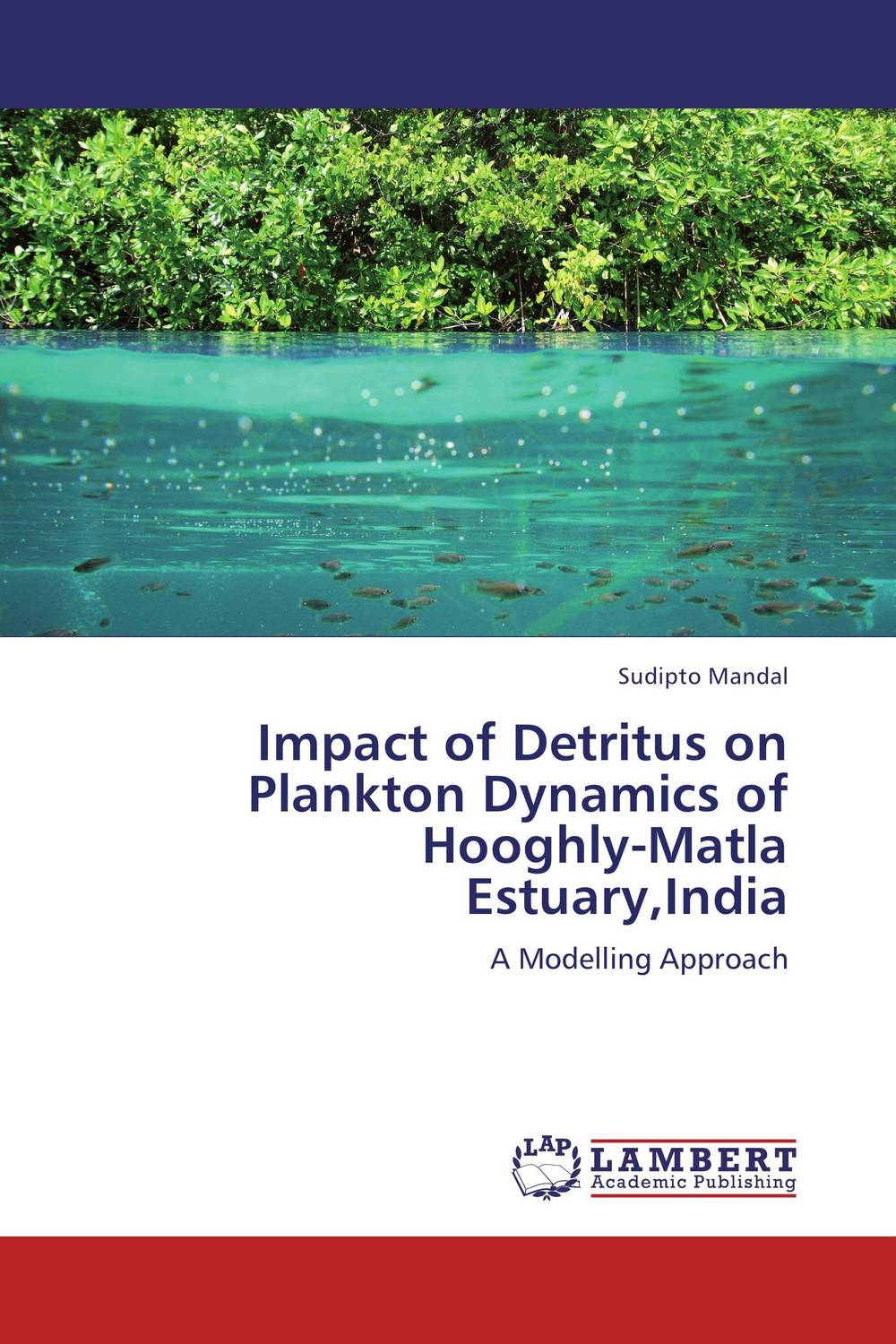 Impact of Detritus on Plankton Dynamics of Hooghly-Matla Estuary,India nutrient dynamics in a pristine subtropical lagoon estuarine system