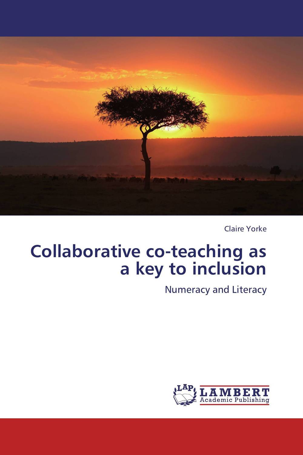 Collaborative co-teaching as a key to inclusion simpfronia taylor teacher efficacy overcoming barriers to computer instruction