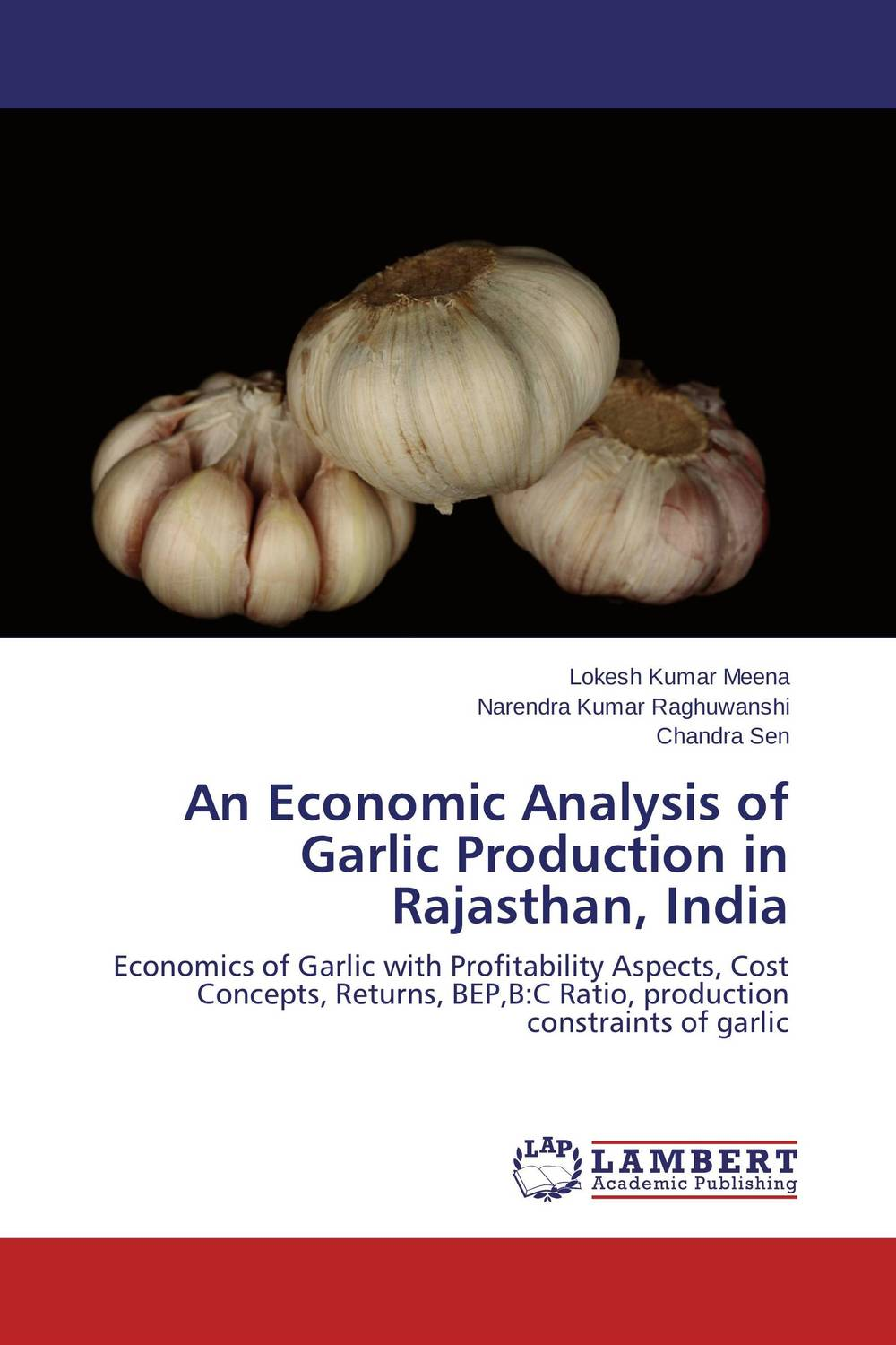 An Economic Analysis of Garlic Production in Rajasthan, India an economic analysis of international student migration