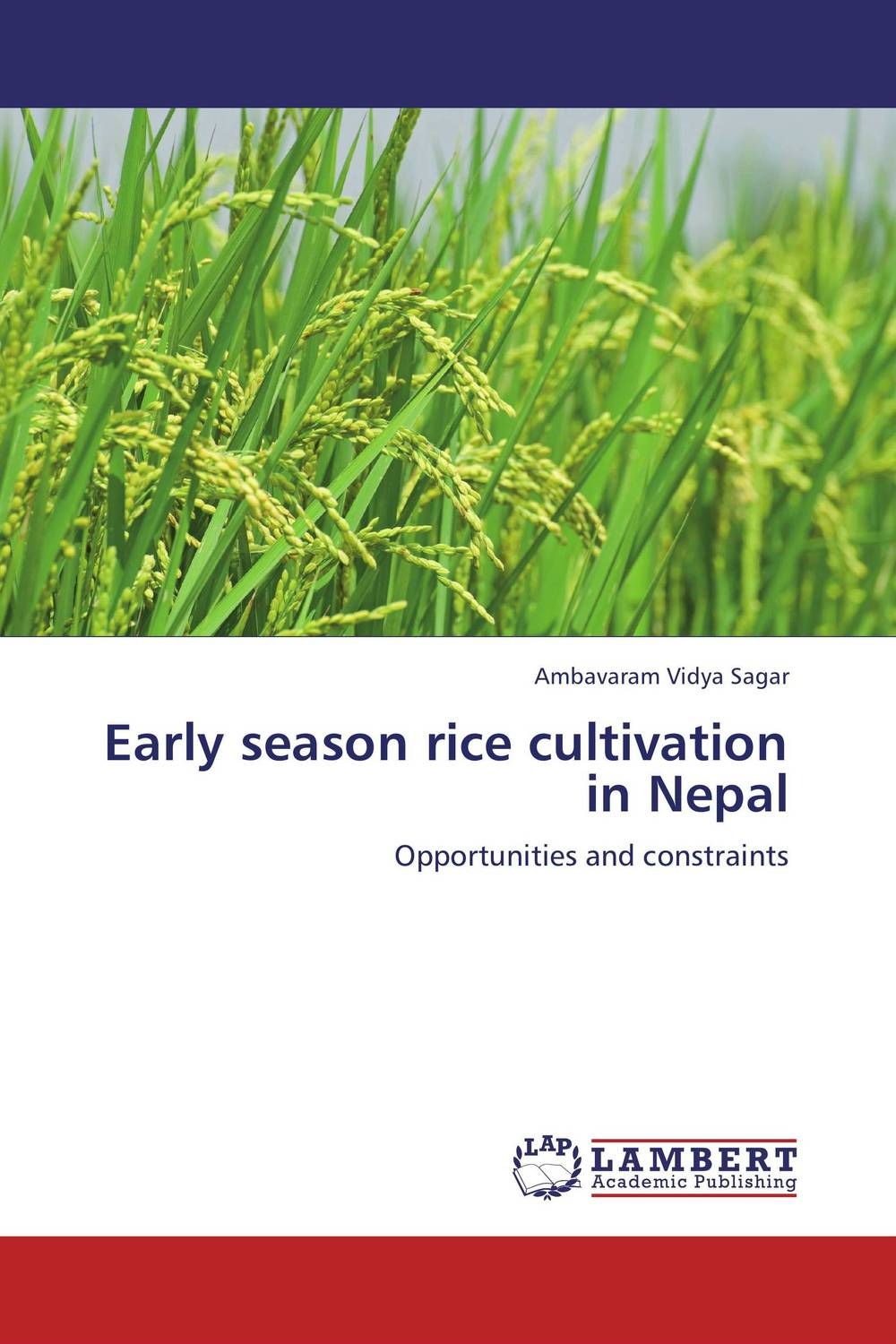 Early season rice cultivation in Nepal майка классическая printio slayer season in the abyss 1990