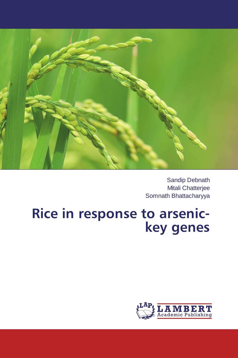 Rice in response to arsenic-key genes response of rice to top dressing of p through complex fertilizers