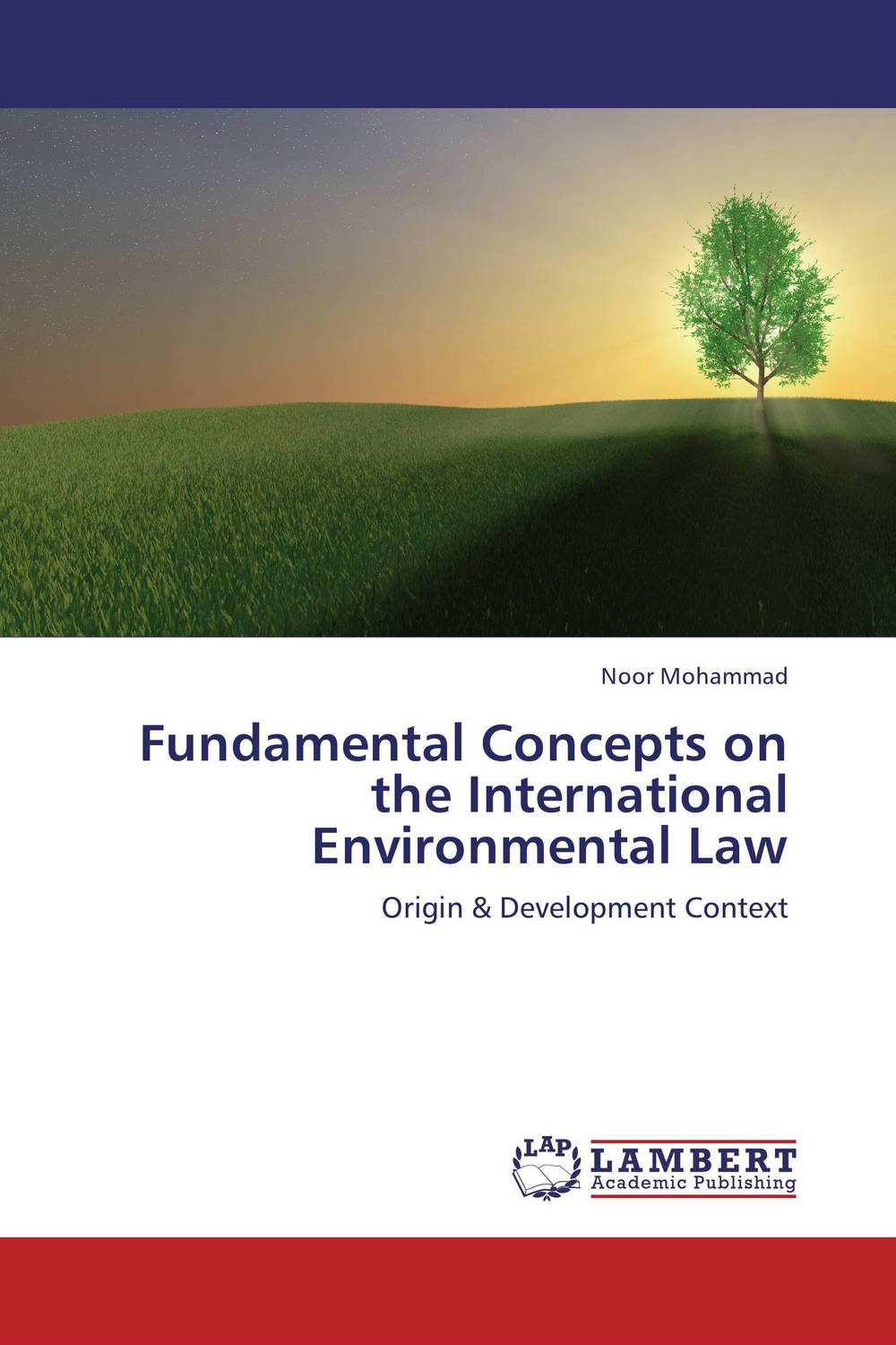 Fundamental Concepts on the International Environmental Law foreign policy as a means for advancing human rights